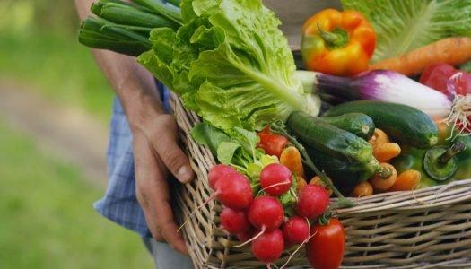 Qualidade Desde a Origem: conheça nosso programa que garante a qualidade de produtos hortifrutigranjeiros