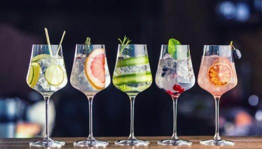Confira opções de drinks com Gin para fazer em casa